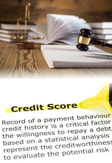 Credit Expert Witness