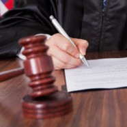 An Introduction to a Credit Damages Expert Witness